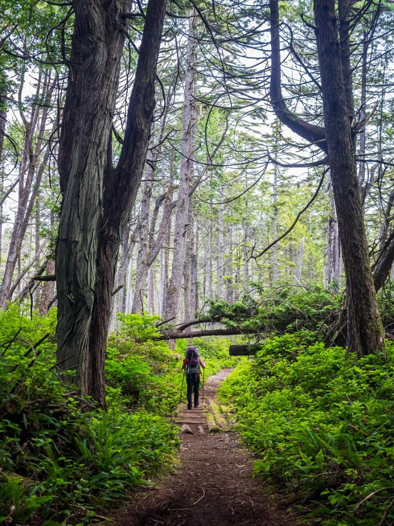 West Coast Trail, Pacific Rim National Park, British Columbia, Canada