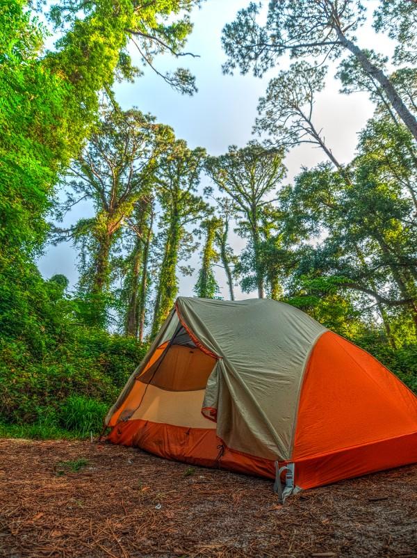 Jekyll Island Campsite