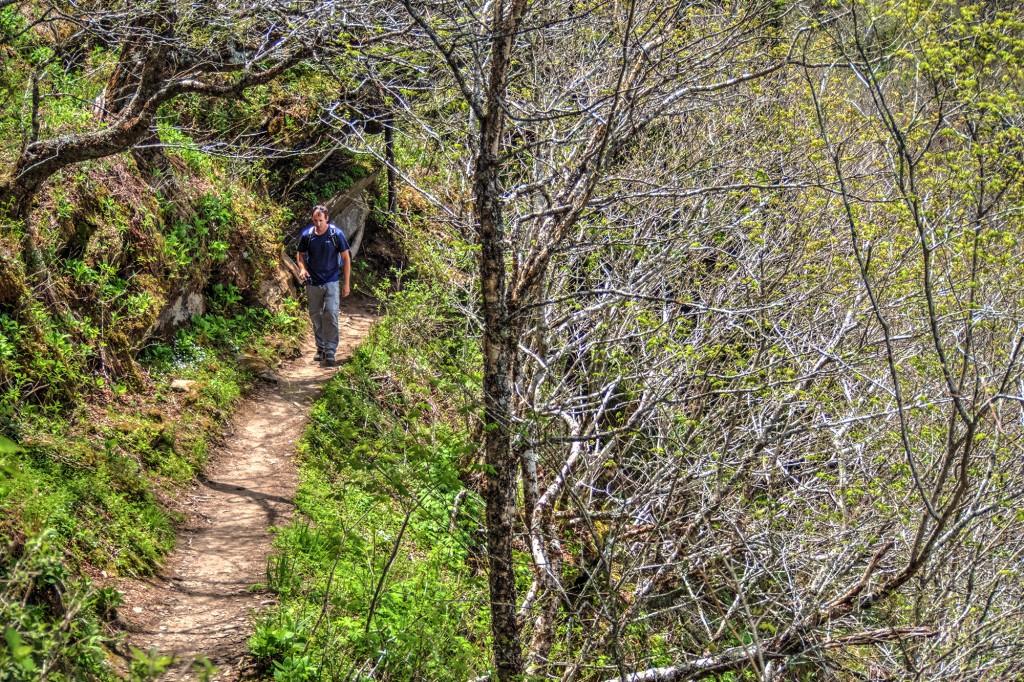 Charlies Bunion. Appalachian Trail.