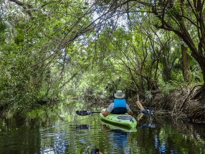 Kayaking Crane Creek on Florida's Space Coast