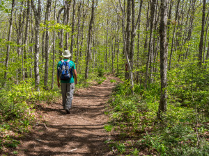 Seaside Hiking: Blomidon Provincial Park, Nova Scotia