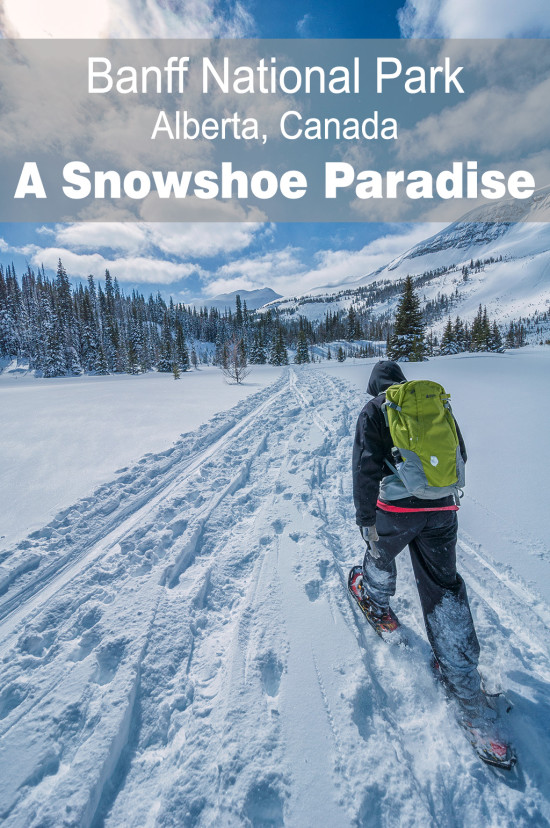 Banff National Park, A snowshoe paradise | Chasing Adventure