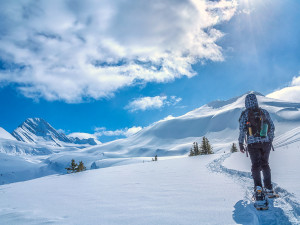 Make Alberta Your Spectacular Snowshoe Destination This Year