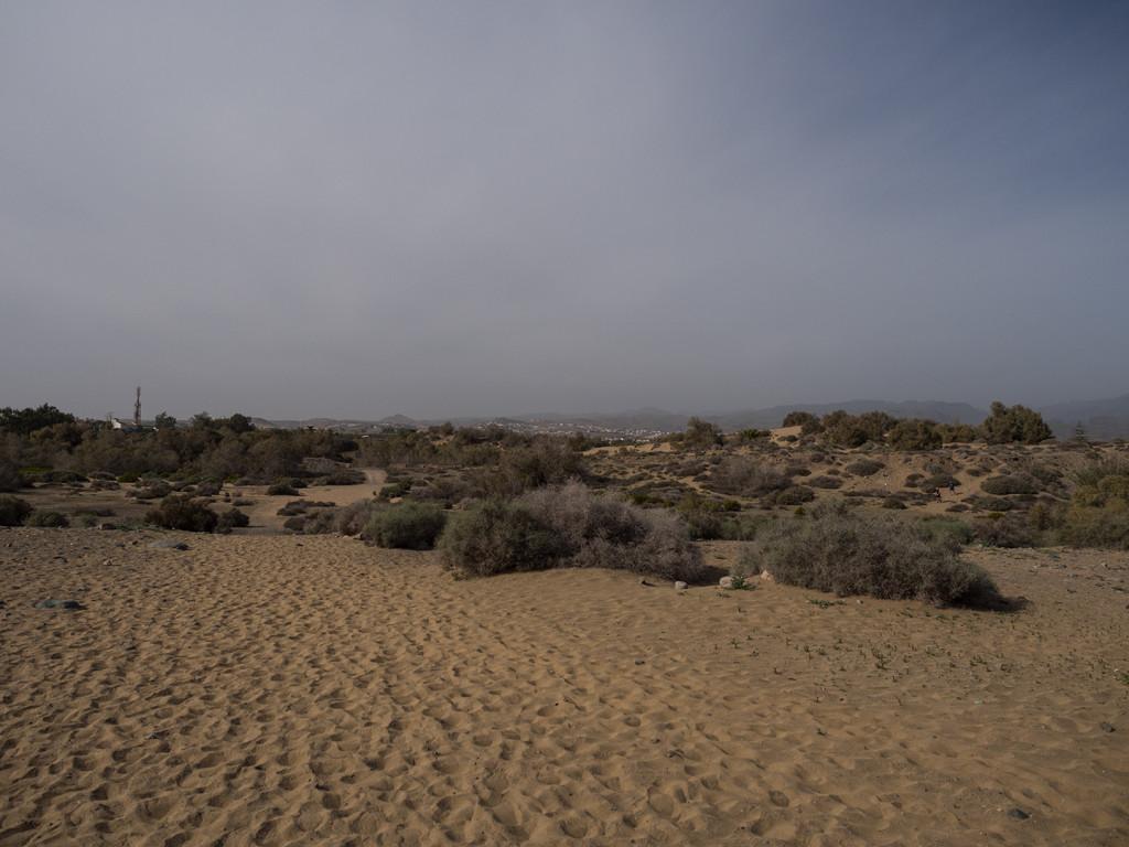 Maspalomas Sand Dunes